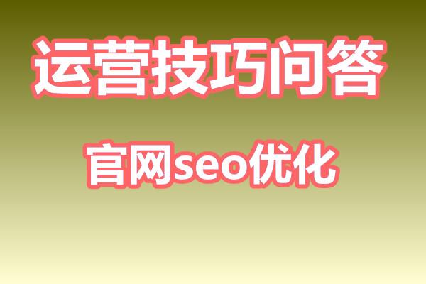 官网seo优化是什么意思?