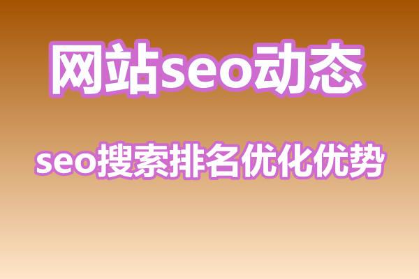seo搜索排名优化有什么优势?产出成正比吗?