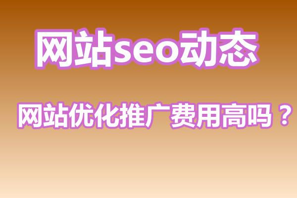 seo网站优化推广费用高吗?