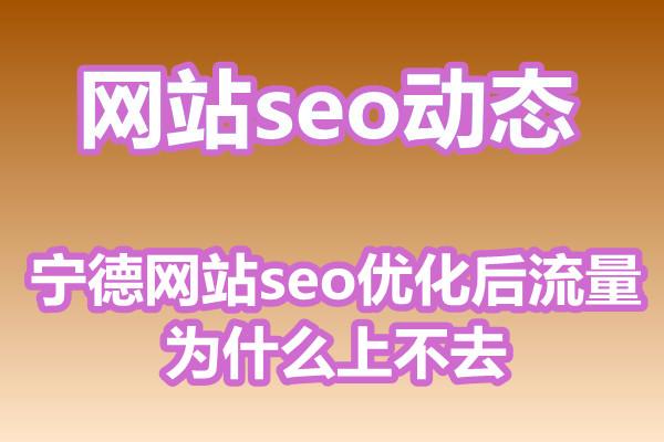 宁德网站seo优化后流量为什么上不去?